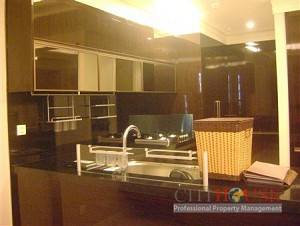Ancient Villa for rent, 250sqm, Conic area, Binh Chanh District, $1400