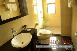 Apartment for rent in District 11, Lu Gia Plaza, Nice furnishings, $650