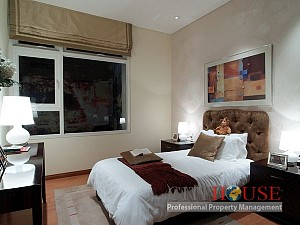 Apartment for rent in Lu Gia Plaza, 2 beds, fully furnished, $650