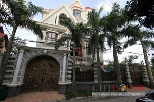 Beautiful Villa in Thao Dien