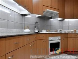 Indochina Park Tower Apartment for Rent in District 1, Near The Zoo, $800