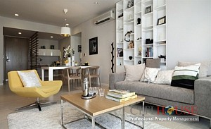 Modern Apartment for Rent in
