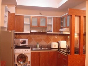Nice Apartment in Indochina for Rent, Dist 1, Near The Zoo, $850
