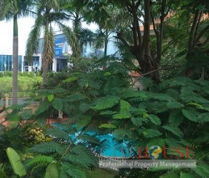 Nice Villa for lease in District 2, partly furnished, 3beds, 400 sqm, $2300