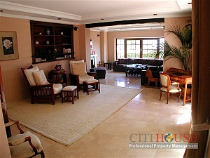 Phu My Hung Villa for Rent in
