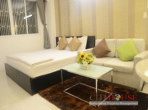 Serviced apartment for rent, Brand new and nice, Studio, $500