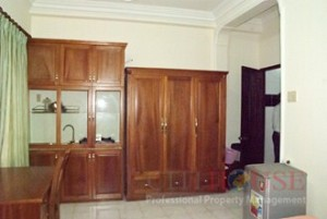 Serviced Studio Apartment for Rent in District 1, Thai Van Lung Street, $400