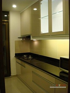 The Panorama for Rent in Phu My Hung, Nice design, 145 sqm, $1600