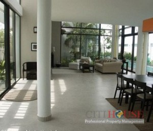 Villa For Rent in Phu My Hung,