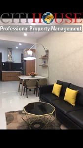 Wilton apartment for rent in Binh Thanh, good location and full facilities